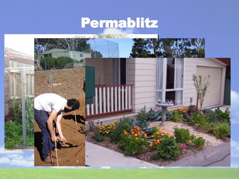 Permablitz 2