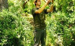 Adam in weedscape