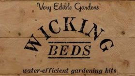 Building Wicking Beds in Melbourne 28