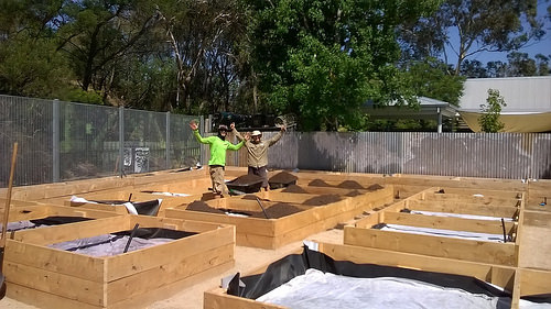 Building Wicking Beds in Melbourne 16