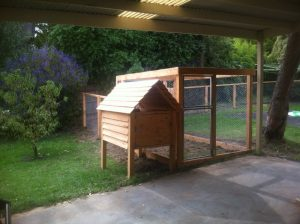 VEG chook house