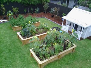 Another VEG made garden