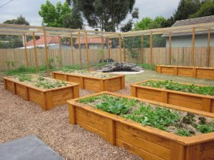 Eaglemont veggie beds