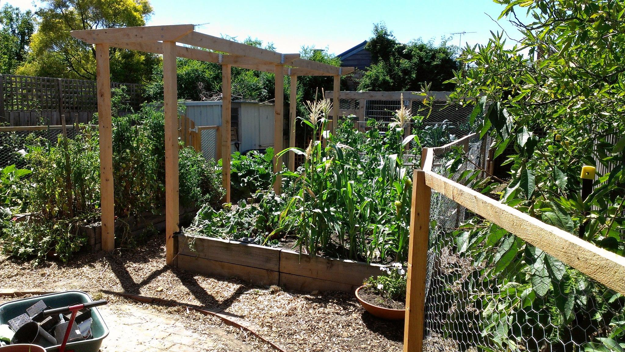 Free Talk on Organic Backyard Veggie Production & Plant Basics