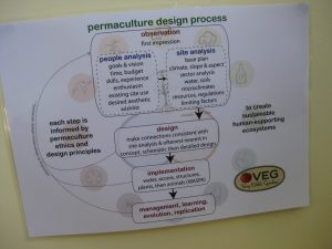 A simplified VEG Permaculture Design Process