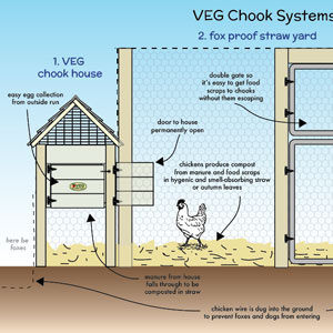 chicken systems