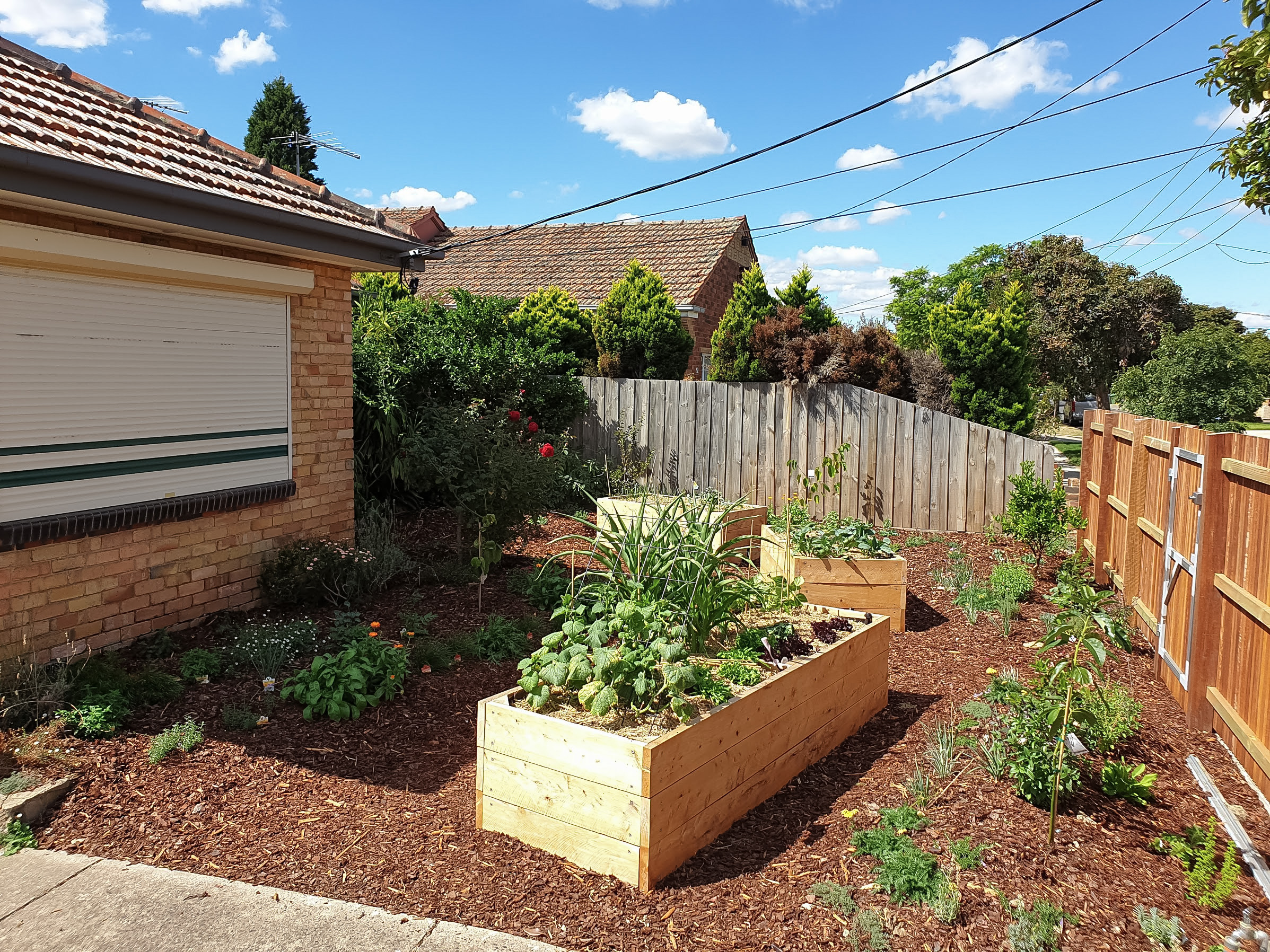 Garden-makover-with wicking-beds-Northcote