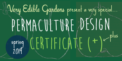 VEG Permaculture Design Certificate Course (PDC) - Spring 2019