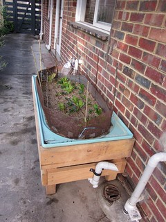 bathtub wicking bed