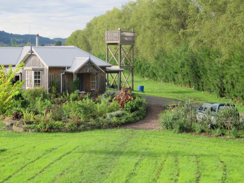 Dan designed garden